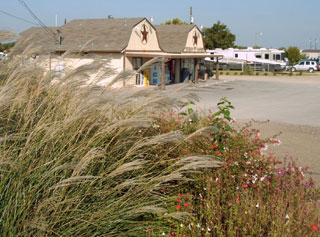 A flower garden near the entrance, with the Texan RV Ranch convenience store and office in the background