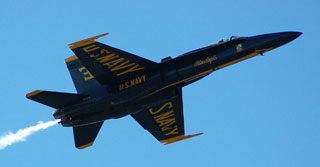 Closeup shot of a Blue Angel