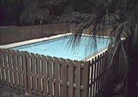 Swimming pool among palm trees