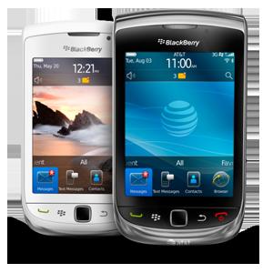 bateria para celular Blackberry TORCH 9800
