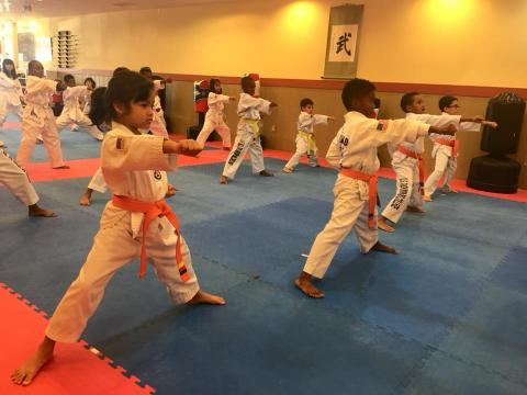 Young US Tae Kwon Do College students practicing forms.