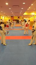 US Tae Kwon Do College Sparring.